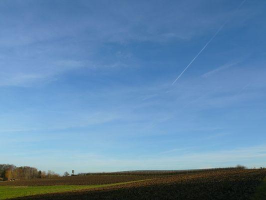 Viel Himmel über dem Feld