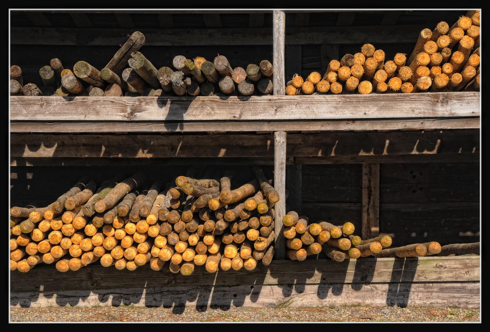 Viel Holz
