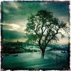 viel Schnee !