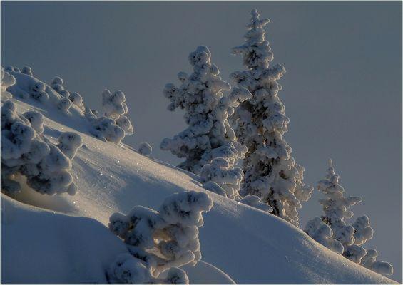 viel schnee, jucheeeee!!!