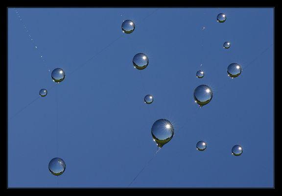 """Viele """"Sonnenballons"""" - nur einer tanzt aus der Reihe..."""