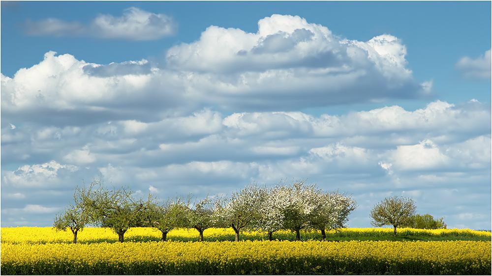 Viele Wolken