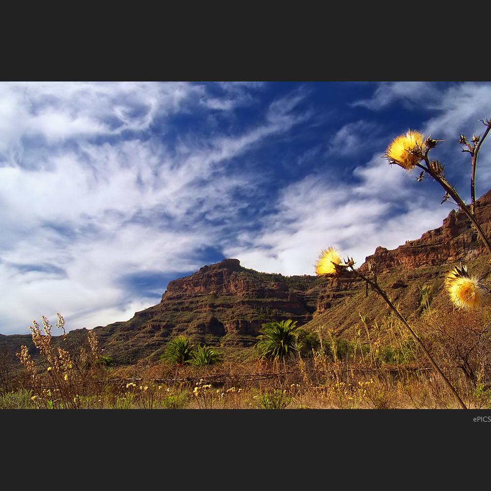 Vielseitiges Gran Canaria