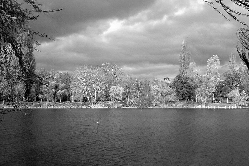 vienna park view
