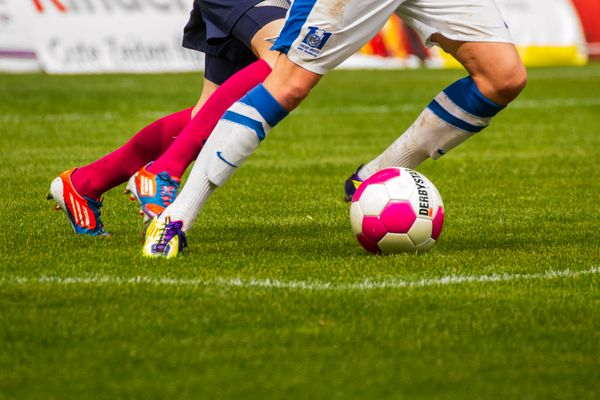 Vier Beine und ein Ball