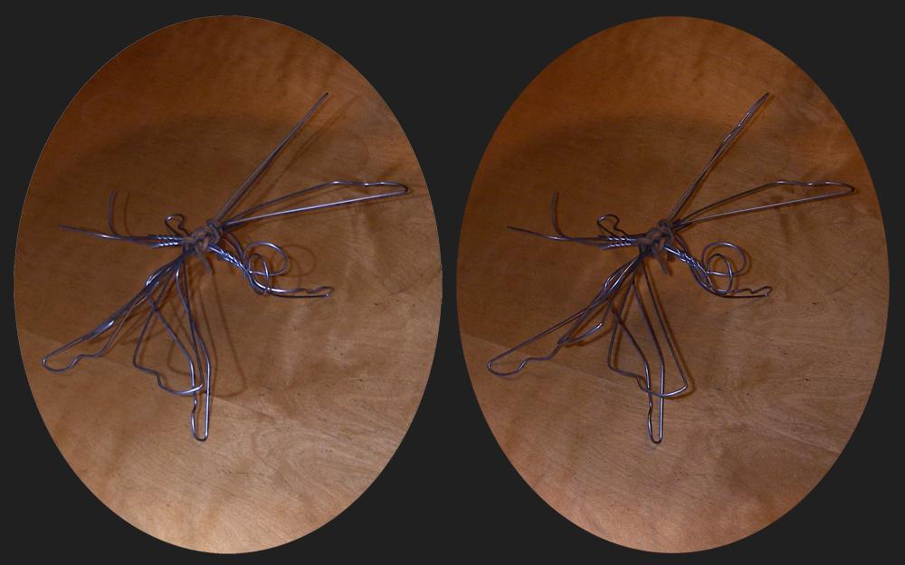 Vier-Bügel-Flügel-Bein-DDDraht-Libelle