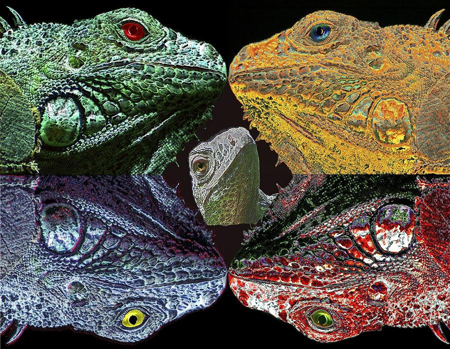 vierfarben