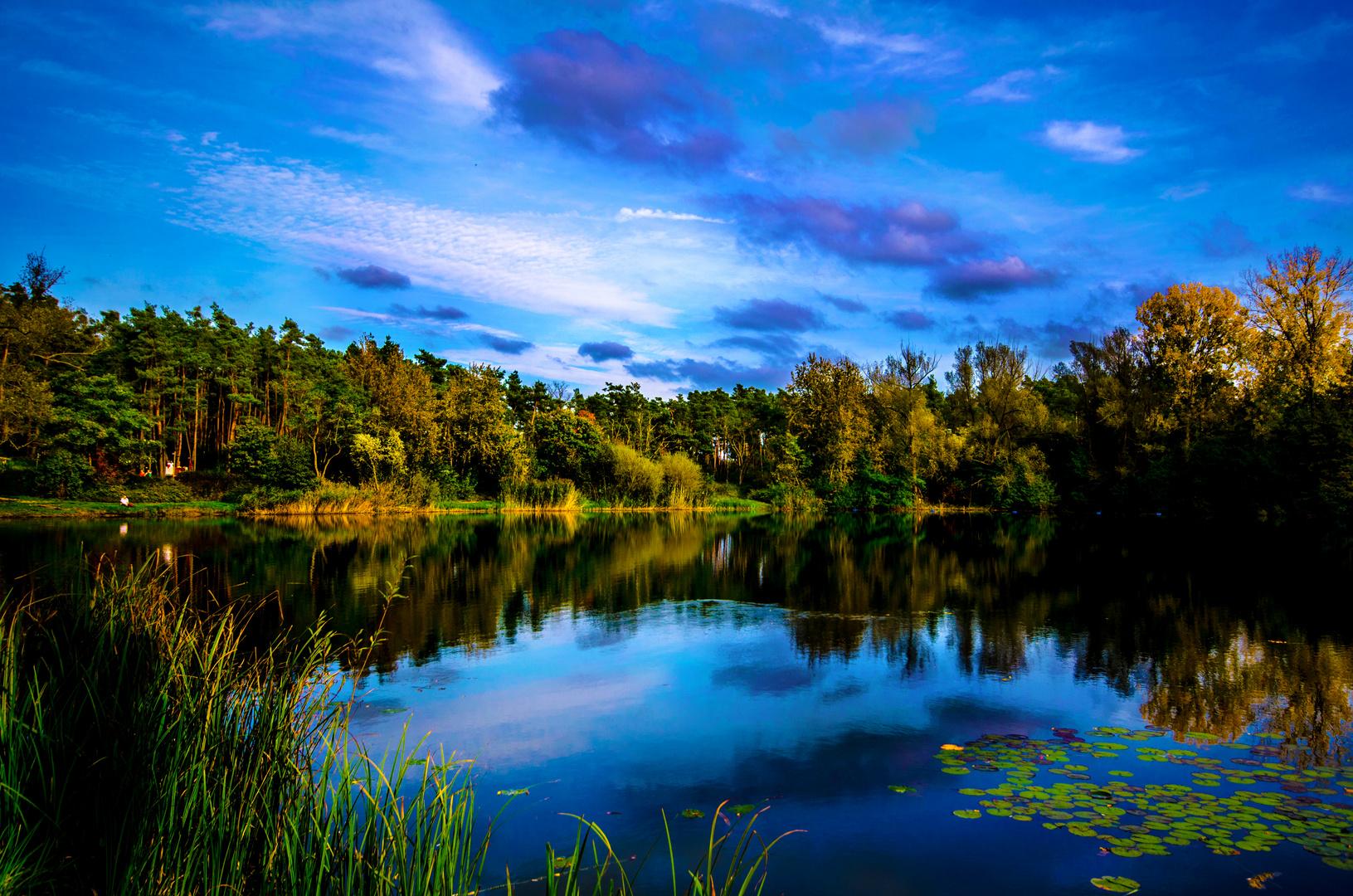 Viernheimer See