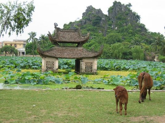 Vietnam - Ein Land geht seinen Weg...