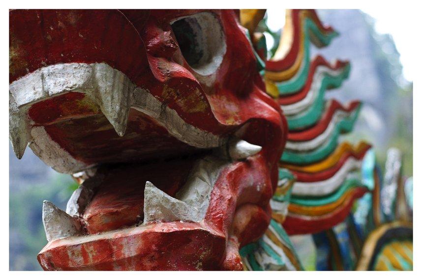 Vietnam - Ninh Binh Province - Dragon