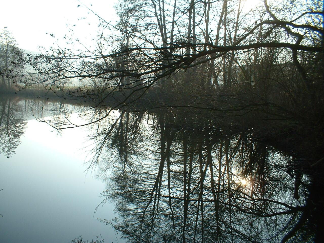Vieux bras de Sambre devenus étangs de pêche à Floriffoux.