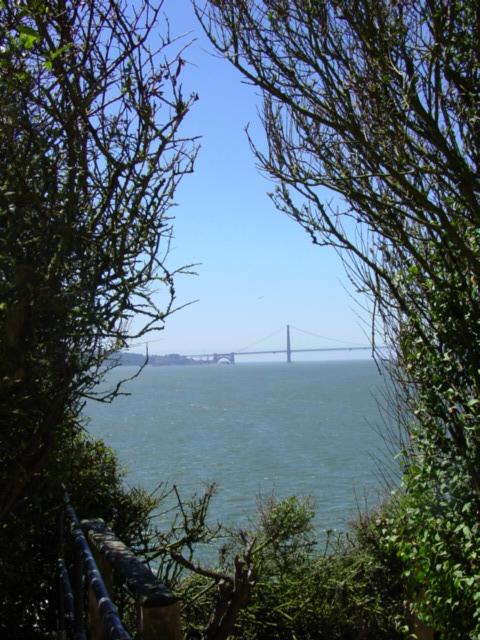 View from Alcatraz, California 2004