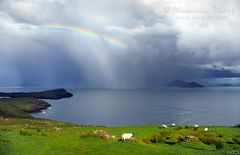 View from Bolushead, Ballinskelligs :: Fotos aus Irland, County Kerry