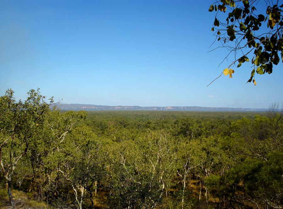 View from Burrunggui, II