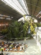 View from the Atocha railway station