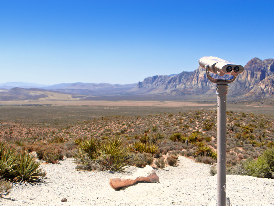 View in the Desert (Nevada)
