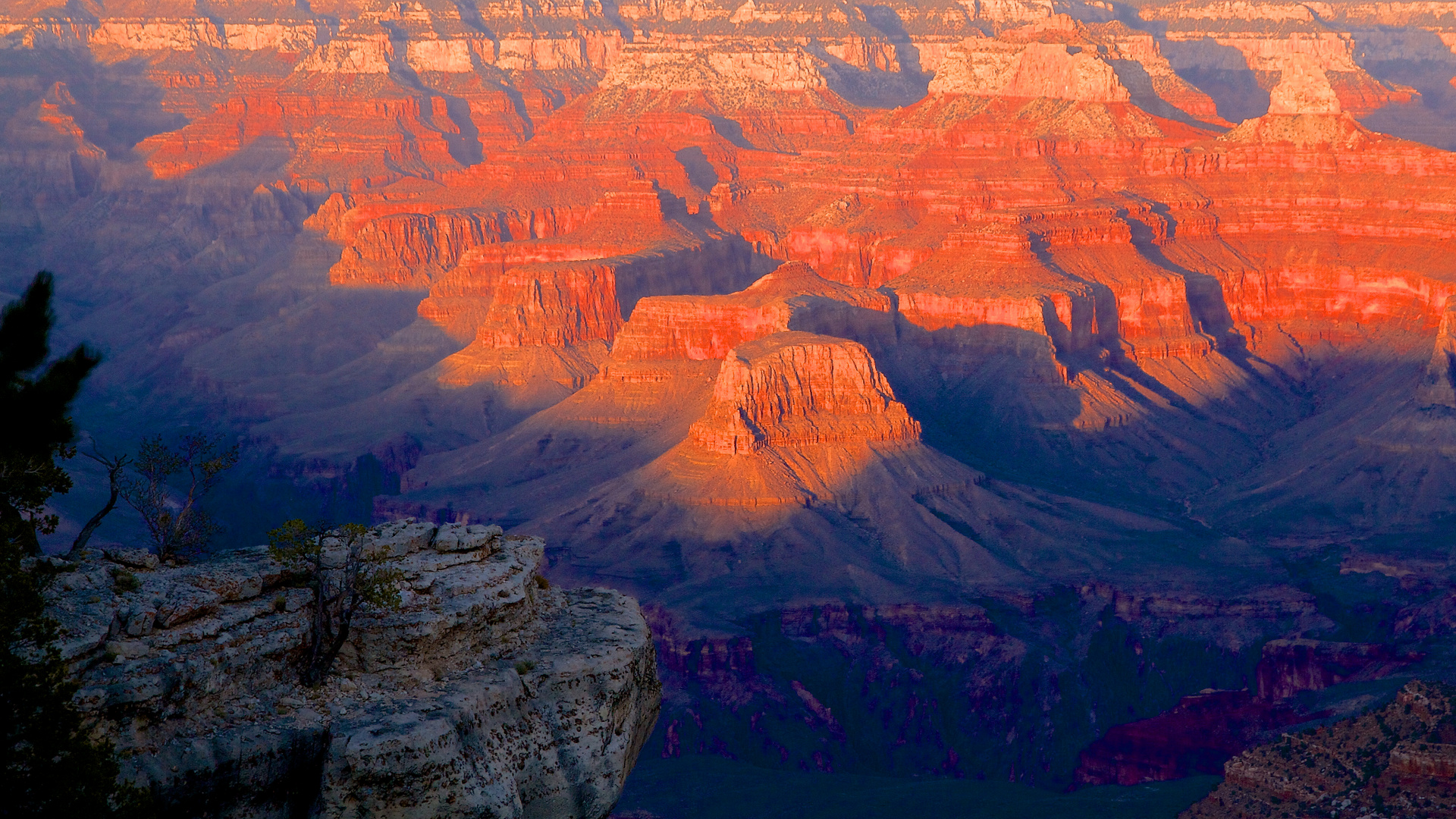 View into Grand Canyon