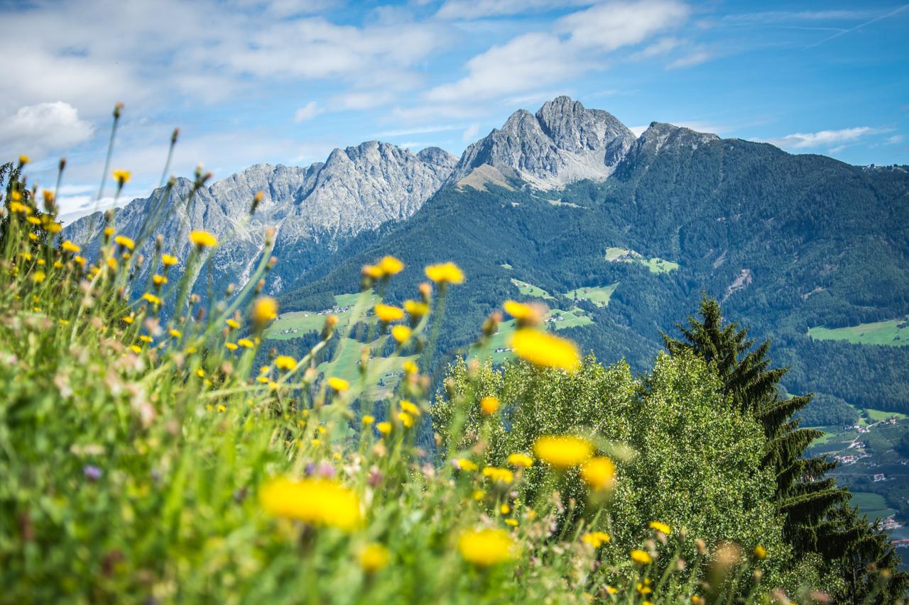 View while hiking Alta Via di Merano