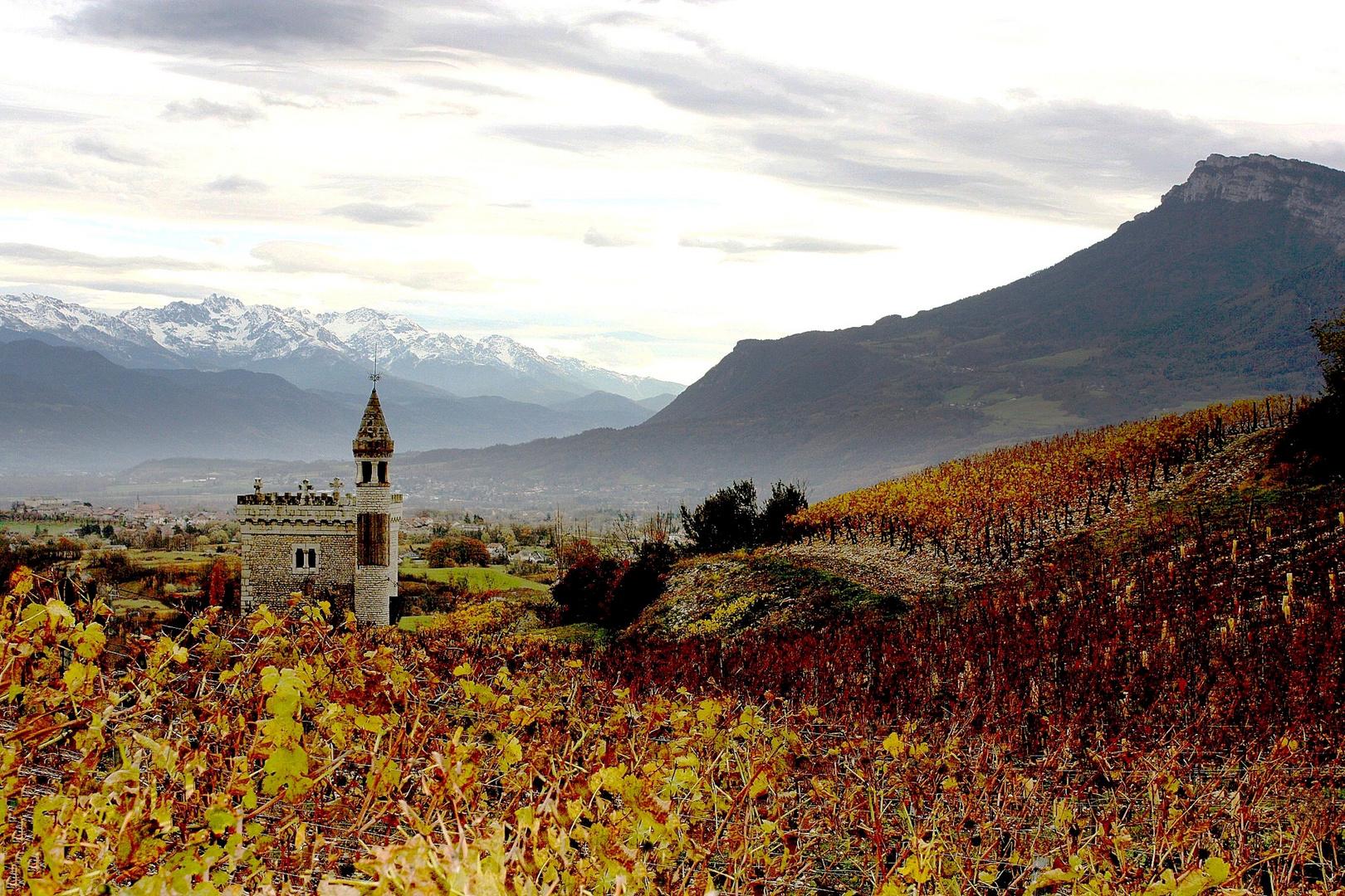 Vignoble d'automne en Savoie