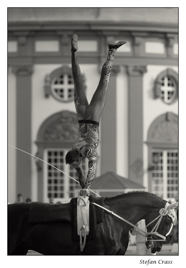 Viktor Brüsewitz - Einzelvoltigieren der Herrn beim Pfingstturnier 2011