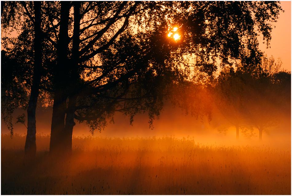 Vilbeler Morgen