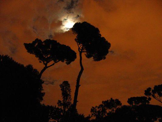 Villa Medici nuit