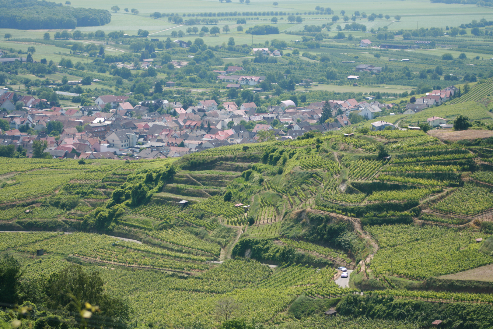 village dans le vignoble