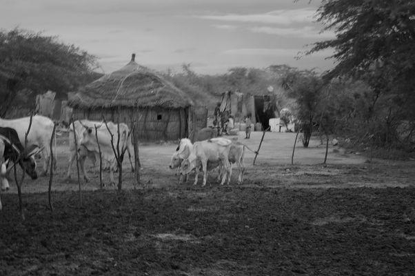 village nomade