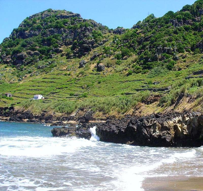 Vineyards meet the Ocean