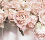 °Vintage Roses°