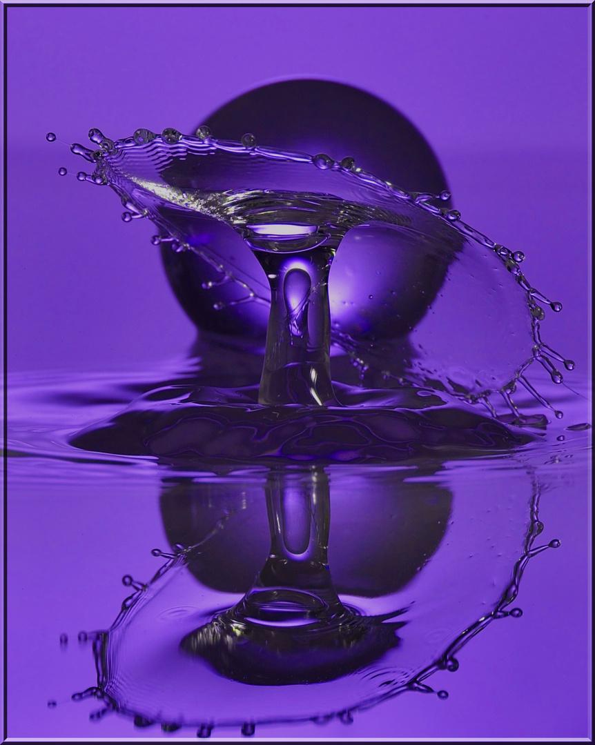 Violett-Dream !
