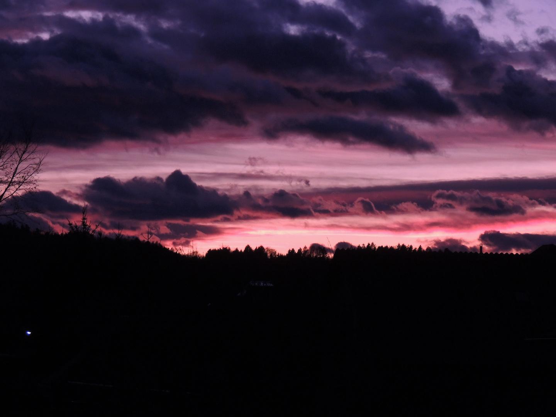 violett hills