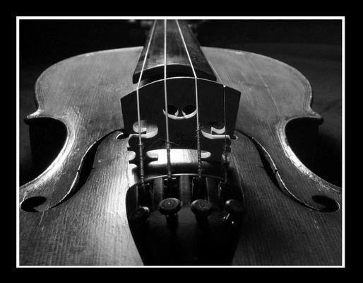 Violine II