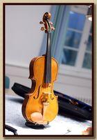 Violine zum November