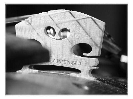 Violinen-Steg