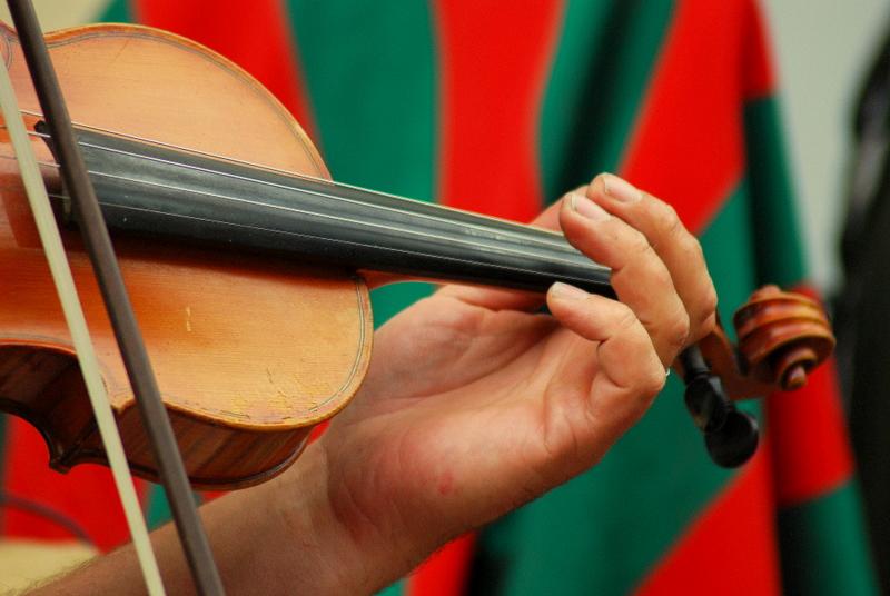 violon couleur