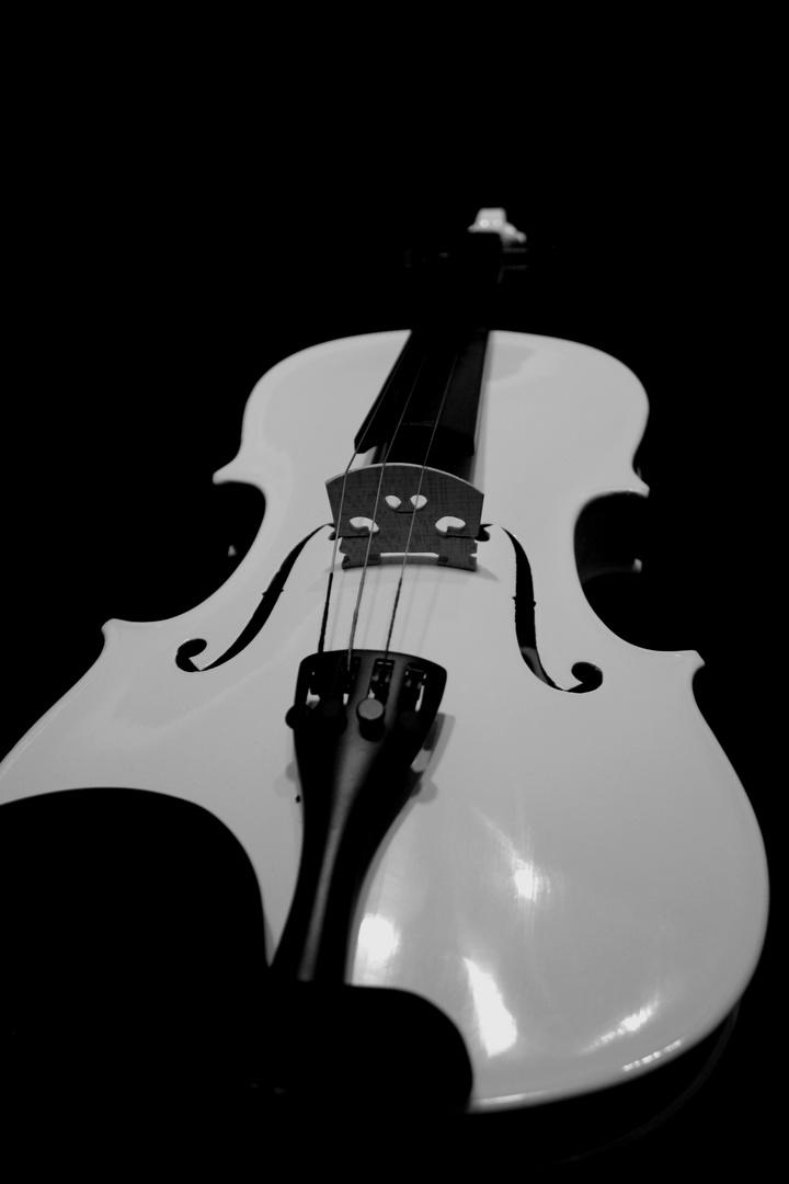 violon infini