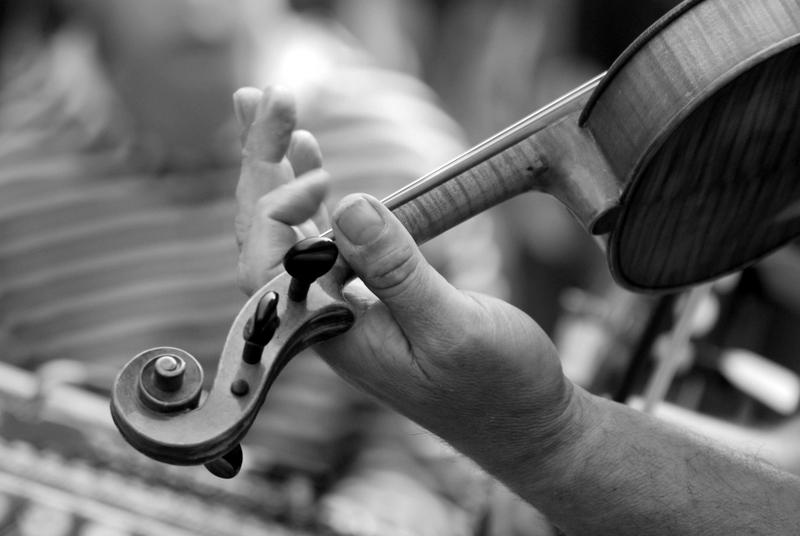 violon N&B
