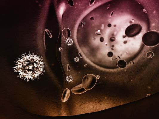 Viren im Blutstrom