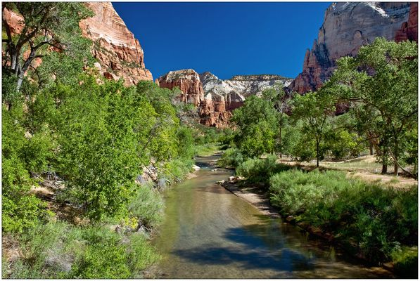 Virgin River - Zion N.P. - Utah - USA