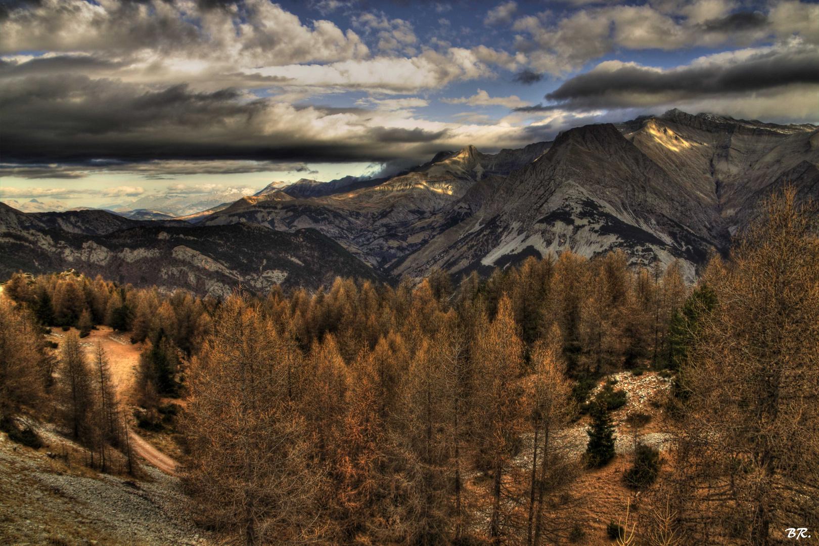vision d'automne (4)