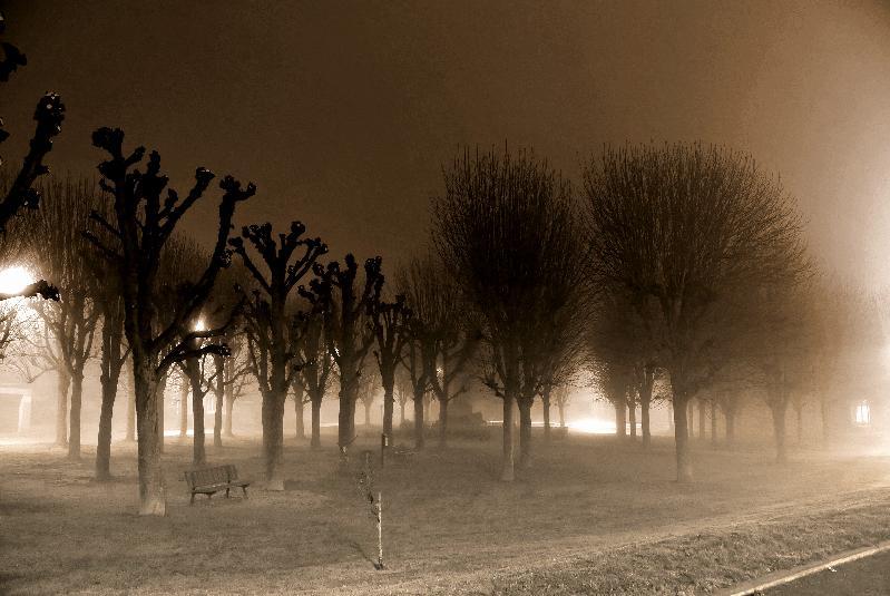 vision nocturne
