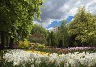 Visita al Jardín Botánico ( Madrid ) - I