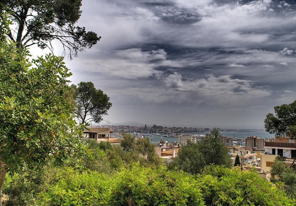 Vista de Palma