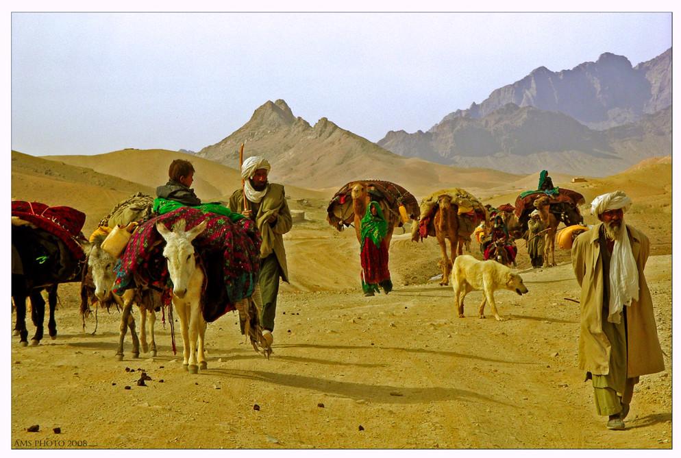 Vita da nomadi.....