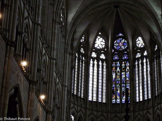 Vitraux de la Cathédrale d'Amiens
