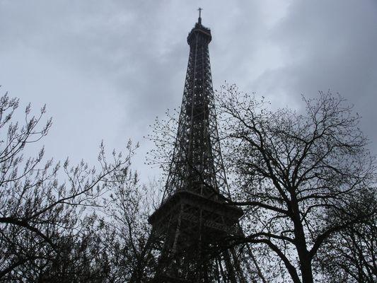Vive la tour