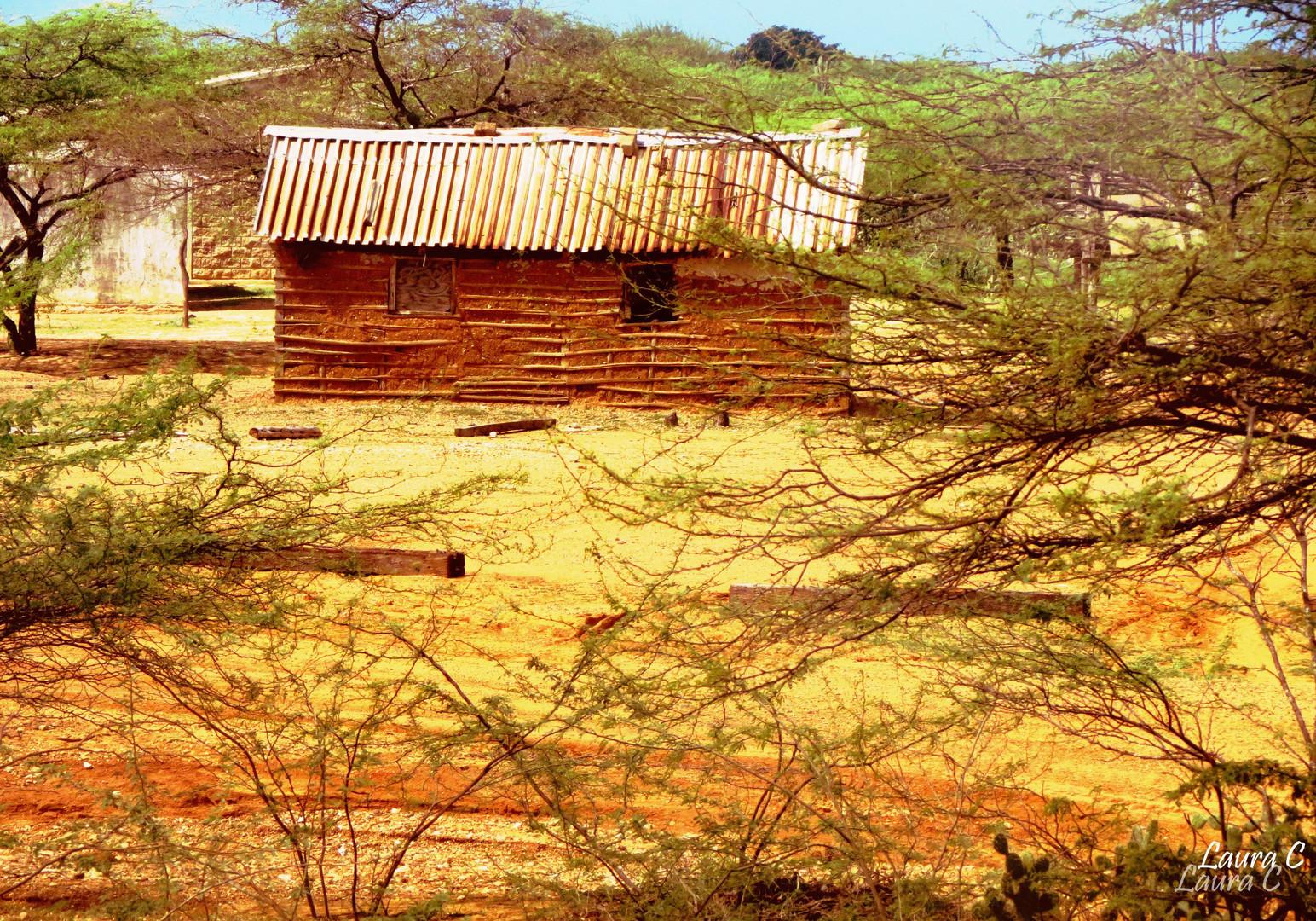 vivienda wayuu