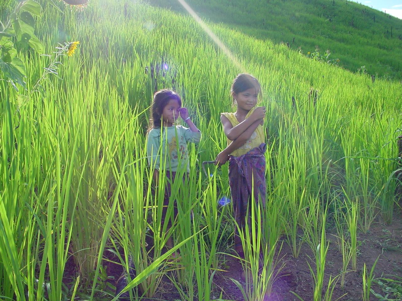 Vivre, simplement vivre... (Laos)