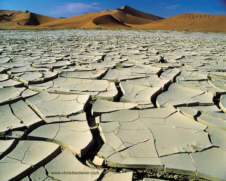 Vlei (Namibia)